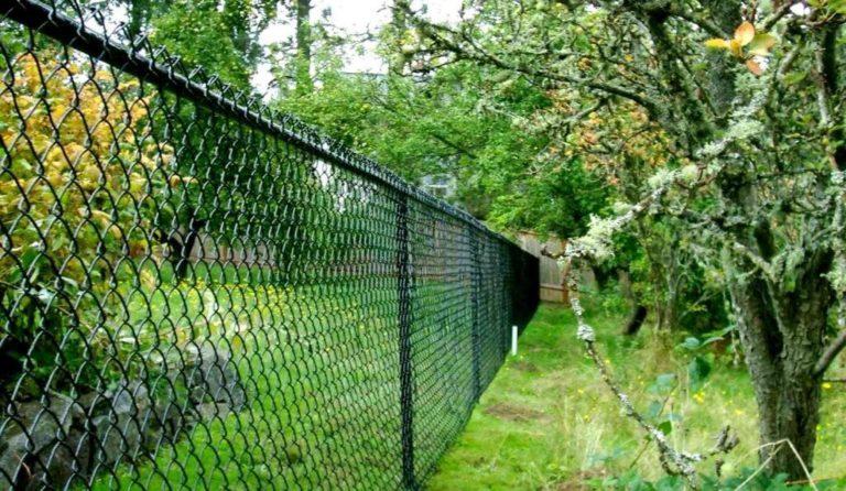 Забор из проволоки на даче